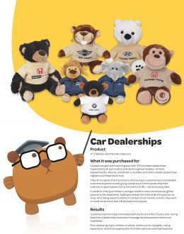 SSC_CaseStudy_CarDealerships