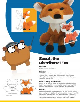 SSC_CaseStudy_Distributel-Scout